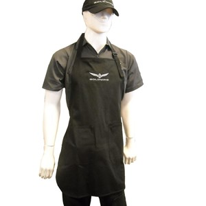 Gold Wing Apron