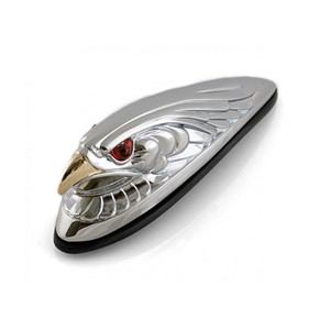 Eagle Fender Light